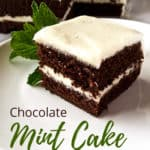 Chocolate Mint Cake, pin for Pinterest with text.