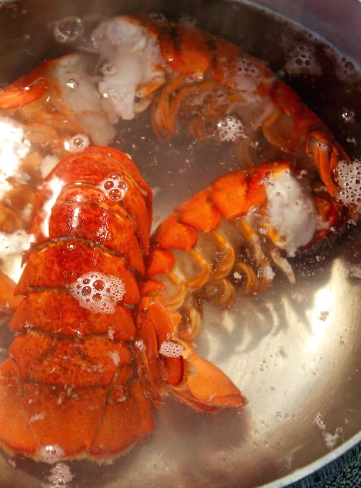 Lobster tails simmering in pot of boiling water.