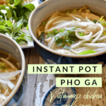 Instant Pot Pho Ga, Pinterest pin with text
