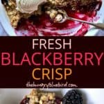 Fresh Blackberry Crisp long pin for Pinterest