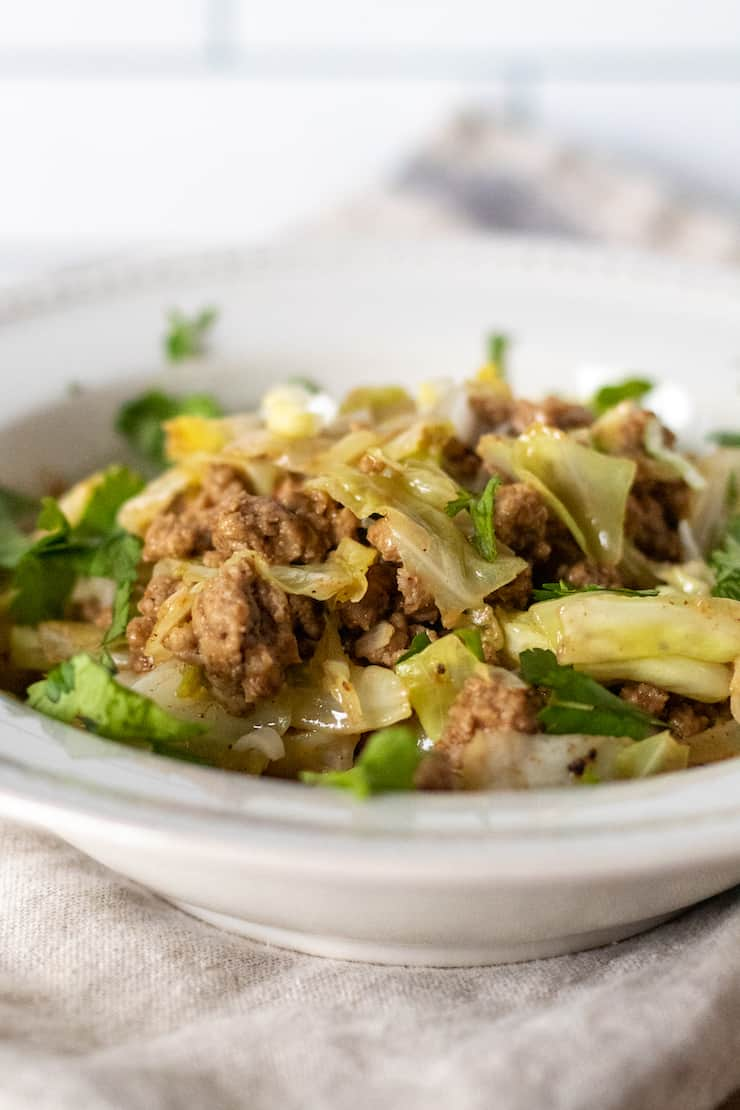 Close up of pork cabbage stir-fry in bowl.